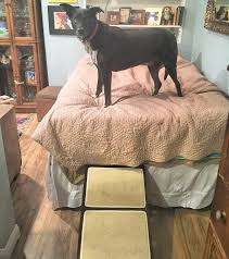 escadas para camas king