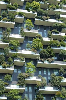 Looking up at an apartment building with blue windows & white balconies full green trees and shrubs. Photo by Chris Barbalis.