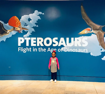 pinterest facebook instagram twitter thedailyaprilnava atlanta georgia museum memberships best mom mommy motherhood black blogger stay at home mom homeschool homeschooler child mother fernbank museum of natural history