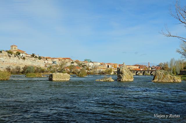 Puente de Olivares, río Duero, Zamora