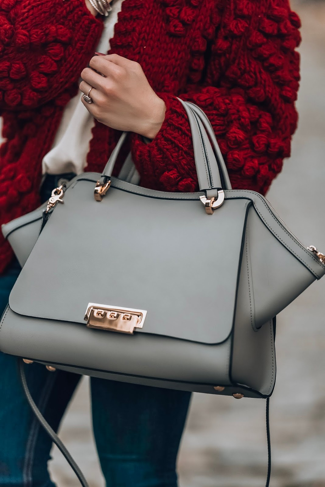 ZAC Zac Posen Bag - Something Delightful Blog