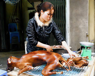 A girl is chopping dog meat.