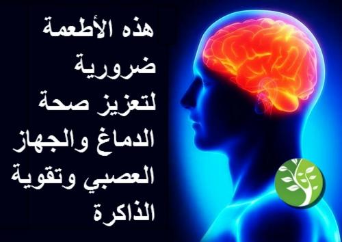 هذه الأطعمة  ضرورية لتعزيز صحة الدماغ والجهاز العصبي وتقوية الذاكرة