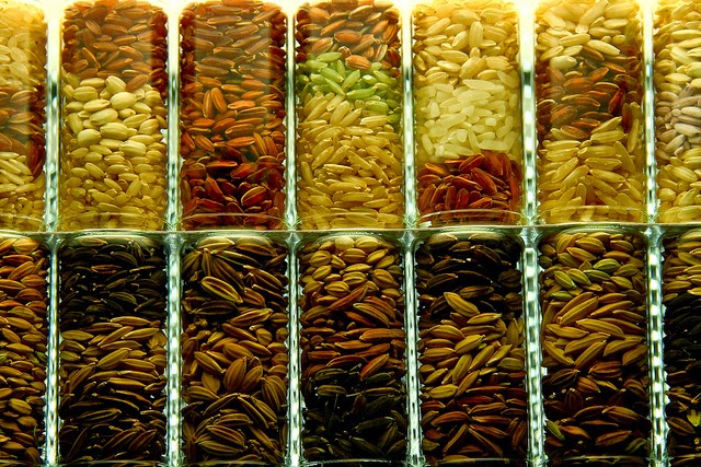 picture of different varieties of rice seed in glass containers