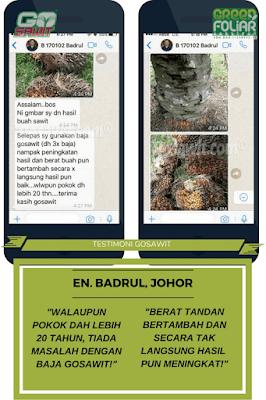 GoSawit, Baja suburkan tanaman sawit, Testimoni baja GoSawit,