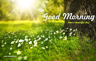 lovely good morning wishes images hd