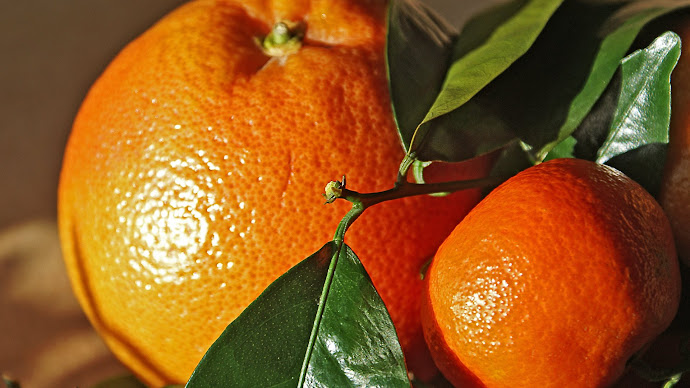 Wallpaper: Fresh and Natural Oranges 2014