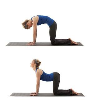body toning, cara kuruskan badan, cara mudah kurus, cat stretch pose, exercise, fitness, kecergasan, posisi cat stretch, senaman regangan otot, senaman untuk kempiskan perut, yoga,