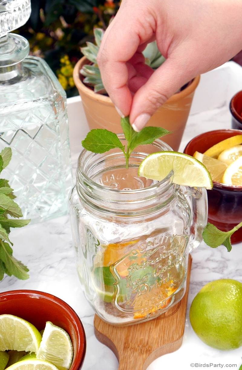A DIY Mojito Bar with Recipe & Printables - BirdsParty.com