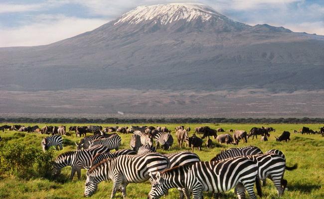Xvlor.com Amboseli National Park is safari area in dry ecosystem of Kenya