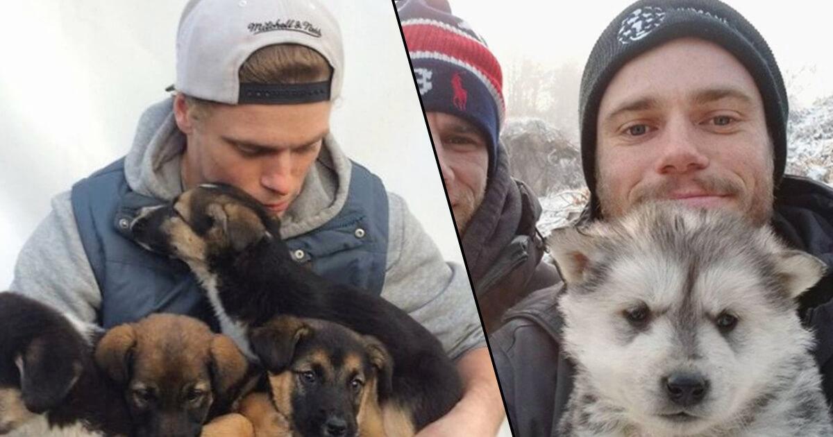 Olympic Skier Convinces A South Korean Dog Farmer To Shut Down His Farm, Saving The Farm's Puppies