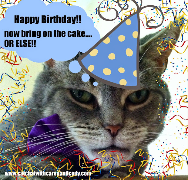 20 Happy Birthday Dead Cat Pictures And Ideas On Meta Networks