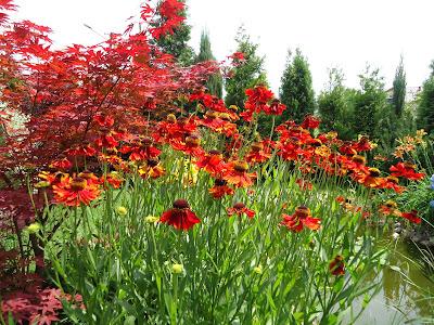 Relaksujący ogród