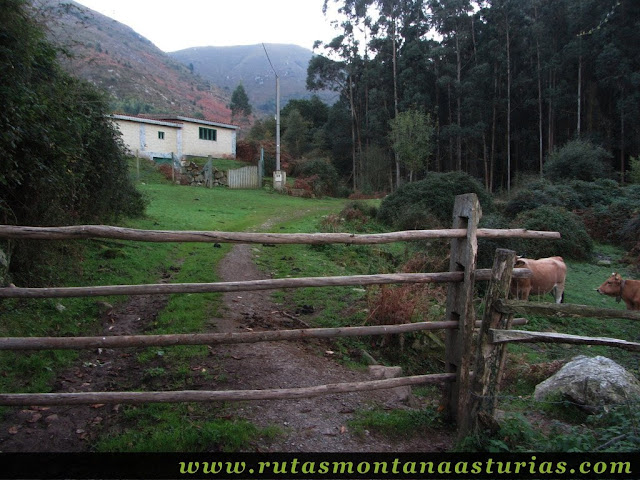 Ruta Pienzu por Mirador Fito y Biescona: Portilla