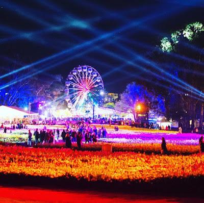 Nighfest Taman Bunga Floriade