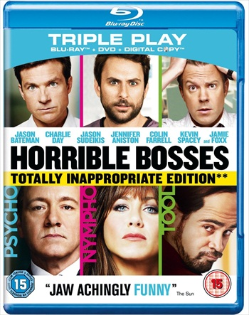 Horrible Bosses 2011 EXTENDED Hindi Dubbed 480p BluRay 300mb