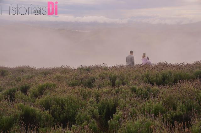 Tempo nublado e romântico no Lavandário de Cunha