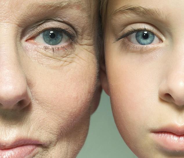 Alimentos para combatir el envejecimiento