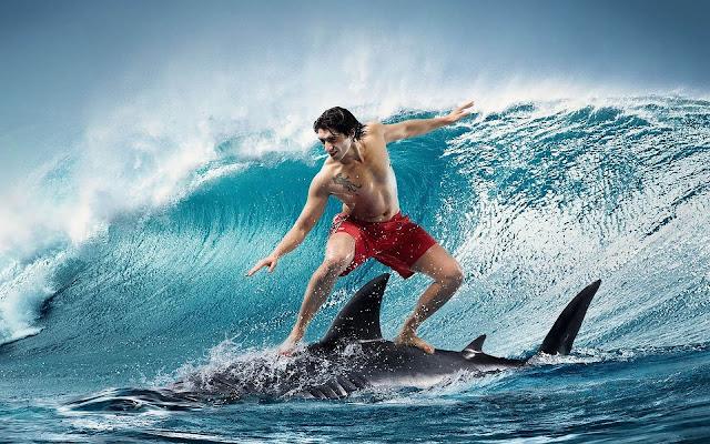 Grappige achtergrond met een haai