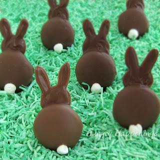 Chocolate Bunny Silhouettes Recipe