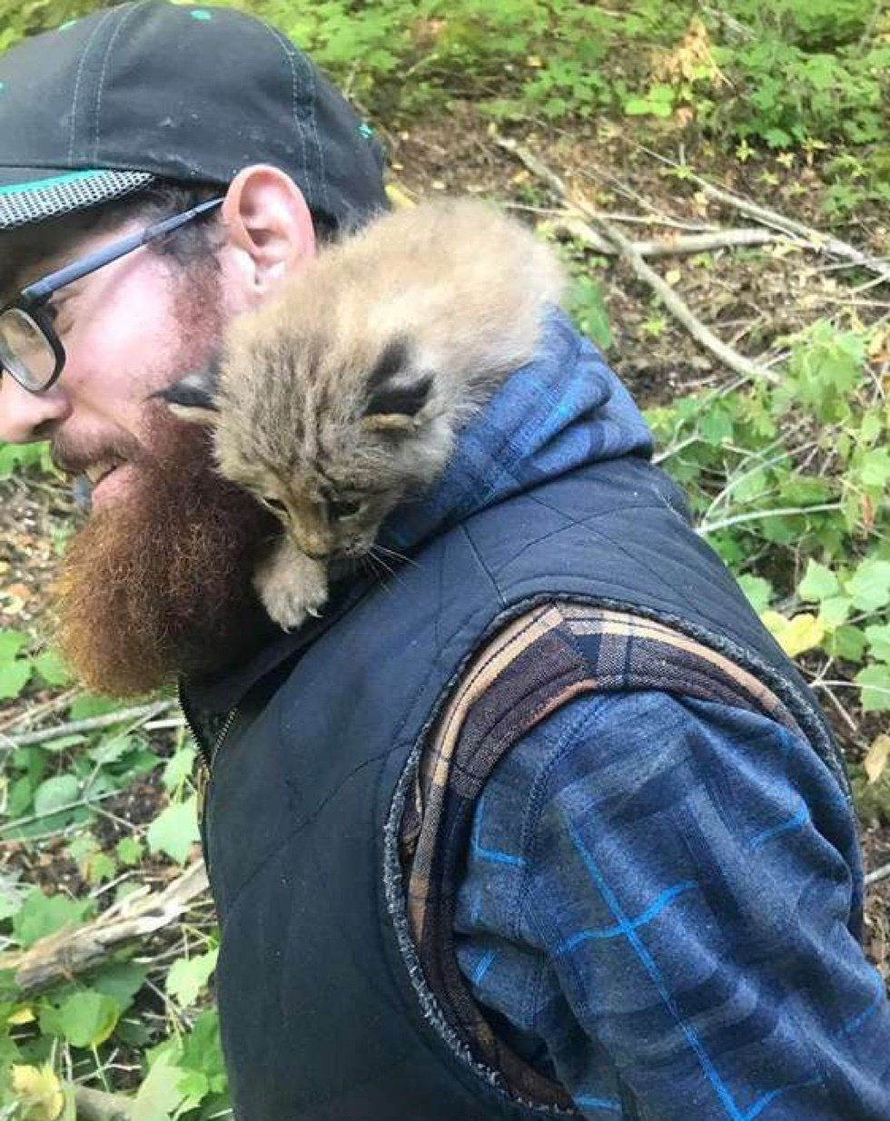 Man Saved What He Thought Was Kitten Until He Saw the Big Paws