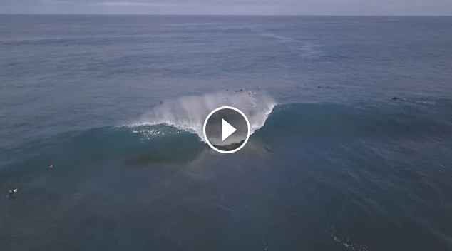 The Box Parko Robinson Florence Seabass morning session
