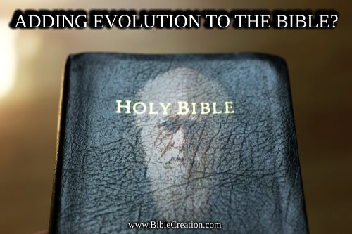 Adding evolution to the Bible