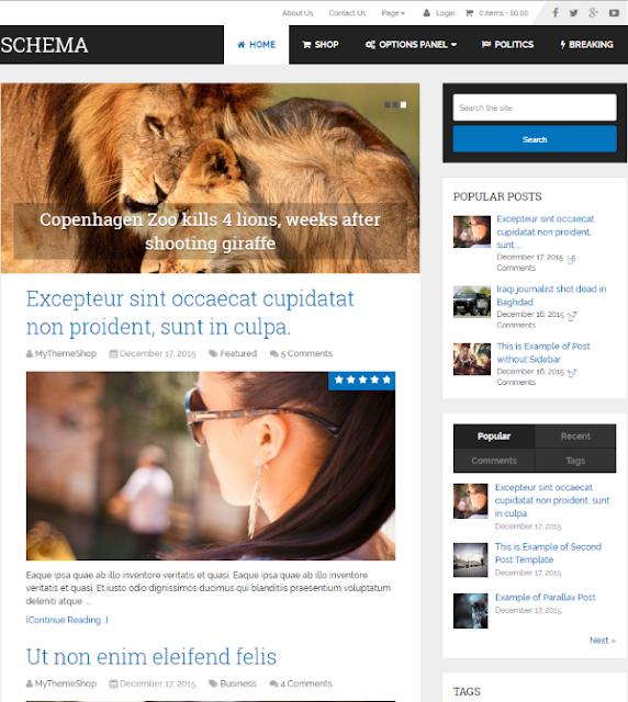 Extra WordPress Theme
