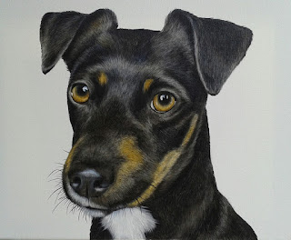 Terrier pet portrait oil on canvas