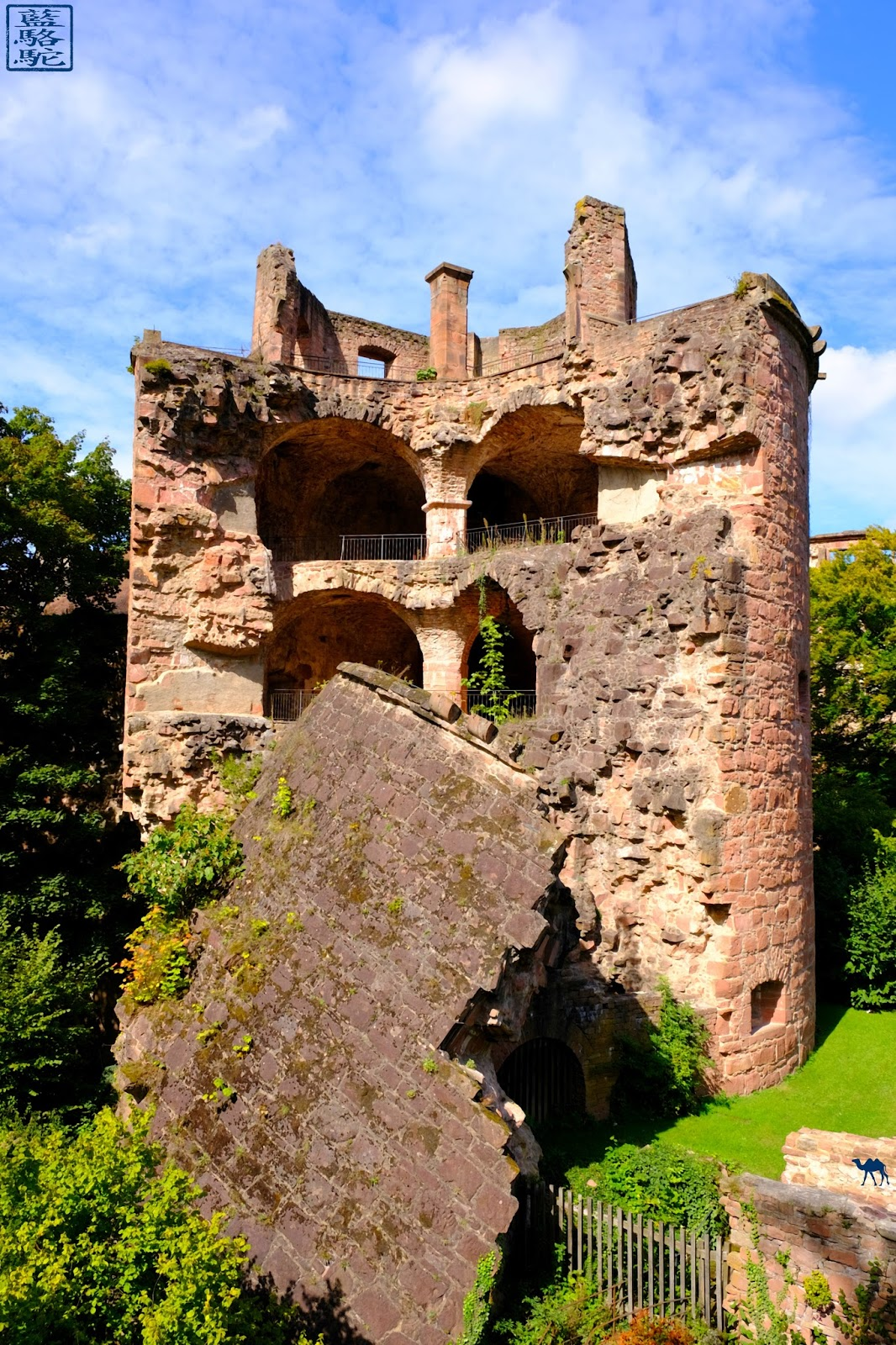 Le Chameau Bleu - Chateau Heidelberg - Tour