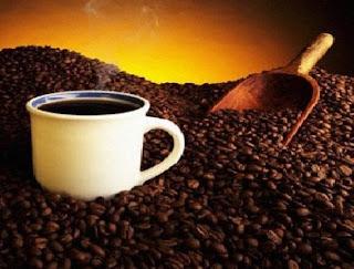 الربح من مشروع صناعة القهوة ودراسة الجدوى  coffee industry