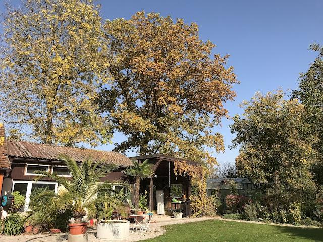 Herbst im Landgarten