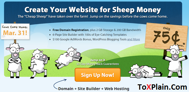 75 Cent Per Month Hosting Plan Or $9 Per Year From Fatcow