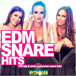 Snare Hits Big Party Hits (2016) Torrent