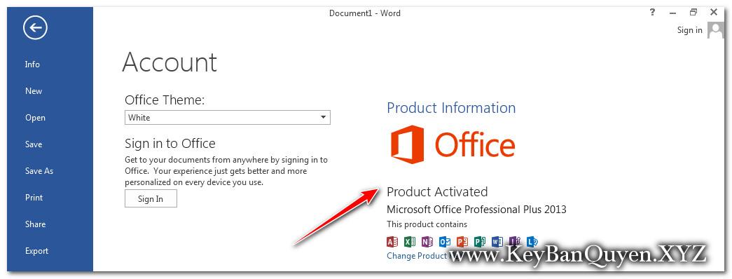 Cài đặt Office Pro Plus 2013 bản quyền