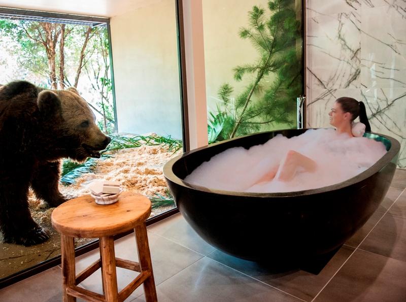canberra jamala wildlife lodge jungle bungalow bath