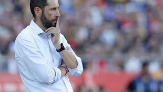 Sevilla have sacked coach Pablo Machin
