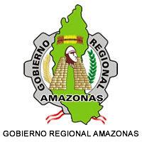 DIRESA AMAZONAS