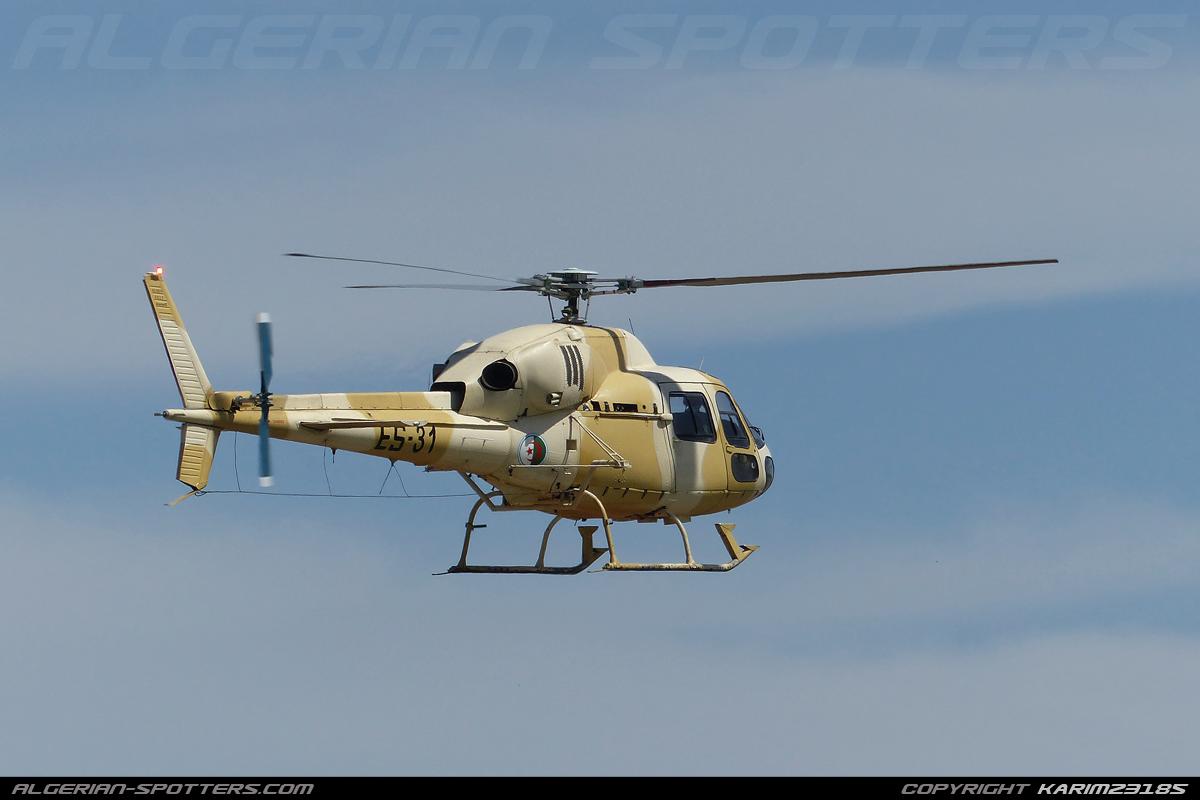 صور مروحيات القوات الجوية الجزائرية Ecureuil/Fennec ] AS-355N2 / AS-555N ] - صفحة 4 1