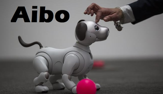 Aibo is a robot dog sold by the Japanese group Sony