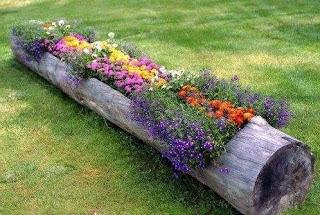 C mo tener un jard n bueno bonito y barato tips de la nueva industria - Como hacer un jardin bonito y barato ...