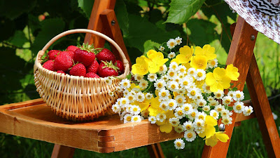 mix-fruits-flowers-images