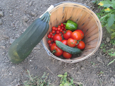 Saving money with garden produce