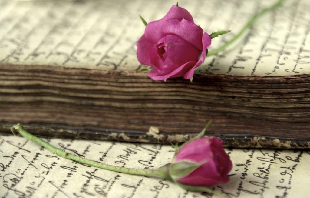 #331 Para qué sirve un poema | luisbermejo.com | podcast
