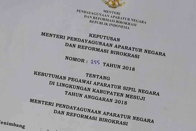 Kemenpan-RB Tetapkan 284 Formasi CPNS Mesuji