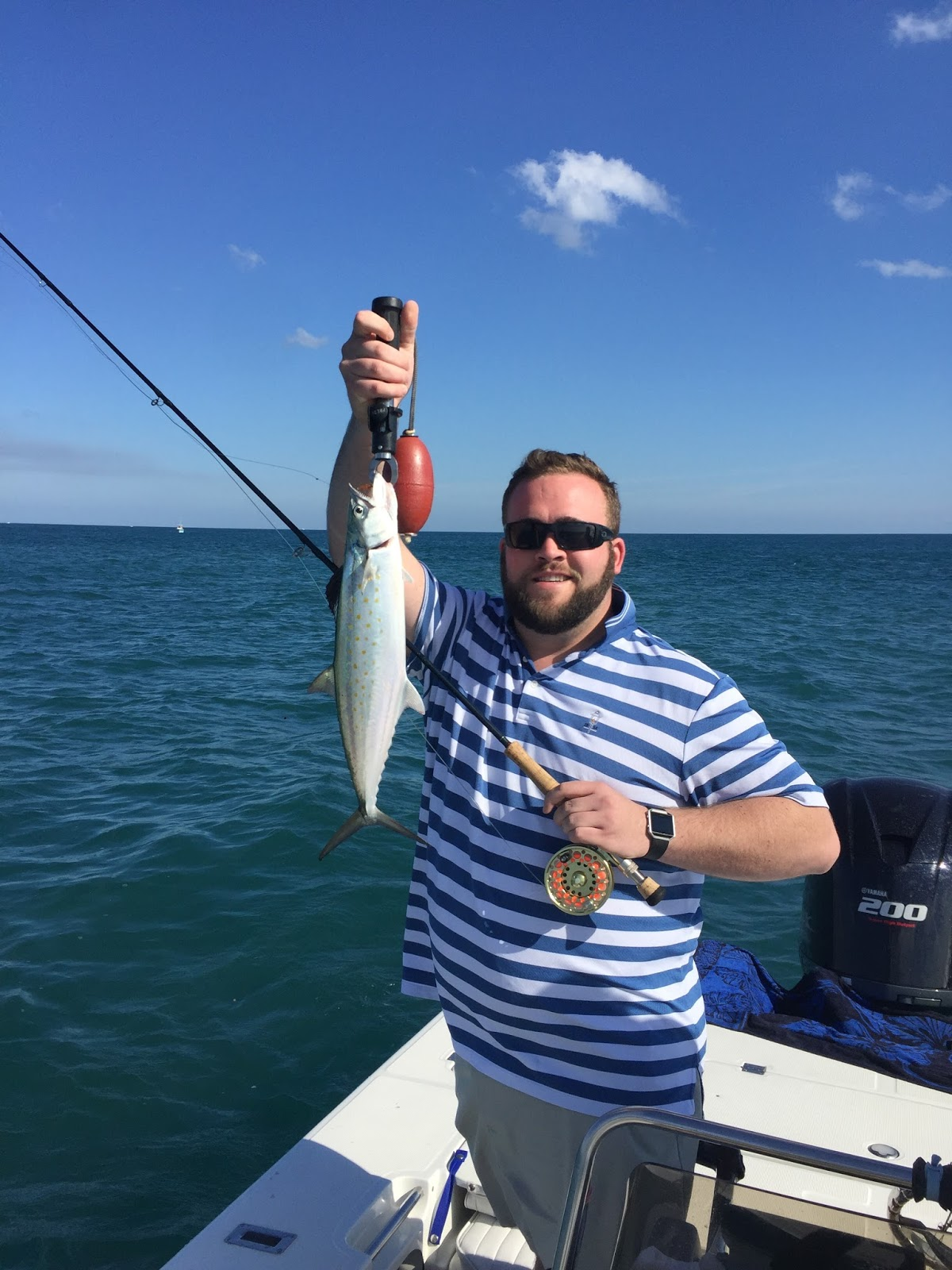 Tkf charters blog captain quintin hall fishing report for Seven b s fishing report