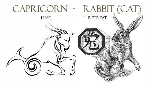 Capricorn rabbit