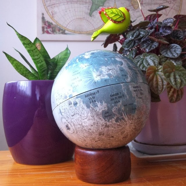Vintage Moon Globe & Indoor Plants - Pocket Carnival.