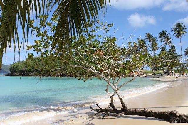 Playa Rincón