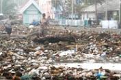 Sampah Kiriman Ombak Musim Barat Penuhi Pantai Selayar